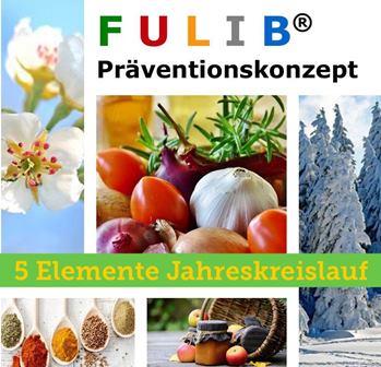 fulib-5-elemente-jahreskreislauf-online-kurs-2020
